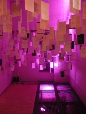 v. Schilling Ausstellung 2014